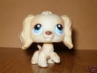 File:91 - squeaky clean pets - tan cocker spaniel dog blue eyes 1 .jpg