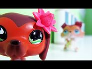 Littlest Pet Shop Popular Episode 11 Revenge Isn t Always Sweet
