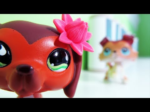 File:Littlest Pet Shop Popular Episode 11 Revenge Isn t Always Sweet .jpg