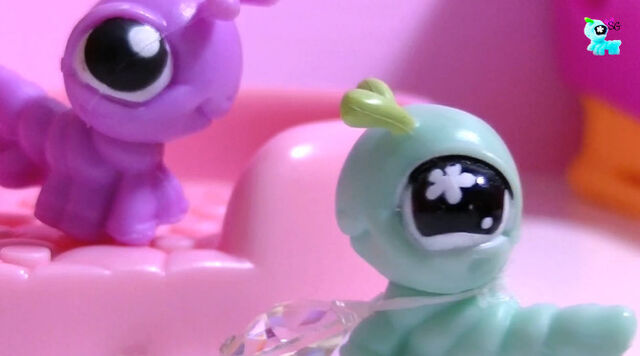 File:Gigi and purple cricket.jpg