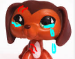 TearsofDach