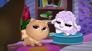 A Pets Best Friend Is 1 (185)