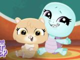 Welcome to the Littlest Pet Shop