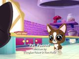 Pet, Peeved