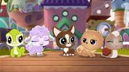 A Pets Best Friend Is 1 (68)