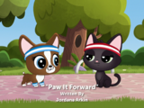 Paw It Forward