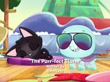The Purr-fect Storm