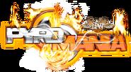 Lpw pyro logo