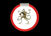 Renegade squad insignia