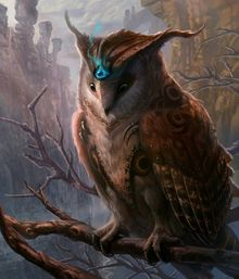Herxes owl