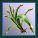 File:Earth spirit herb.jpg