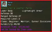 Adventurers leather pants