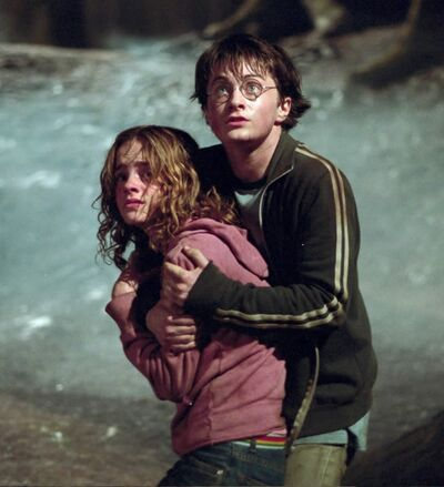 Harry and Hermione4