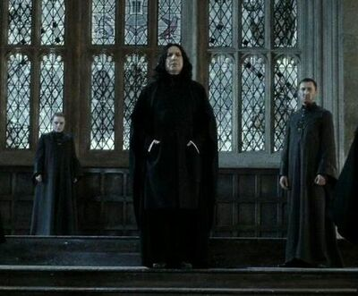 Severus Snape Council