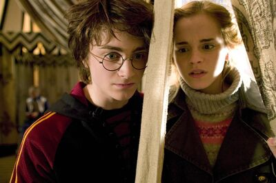 Harry and Hermione1