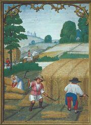 Farming in Lucerne