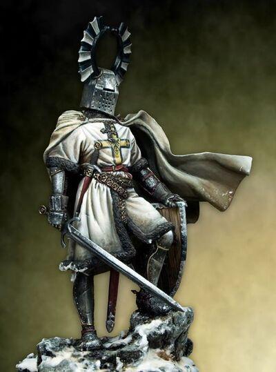 Toppennacht Knight