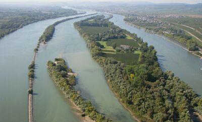 Rhein stromabwärts bei Erbach im Rheingau mit Insel Mariannenau Hessen Landesgrenze Rheinland-Pfalz links - Foto Wolfgang Pehlemann Wiesbaden Photo IMG 0274