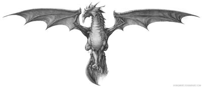 Order of the Grey Dragon