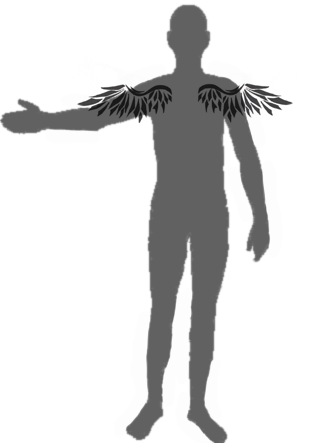 File:Wing.png