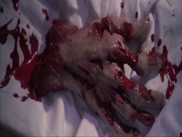File:Zombie Hand.jpg