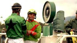 Jockey infobox