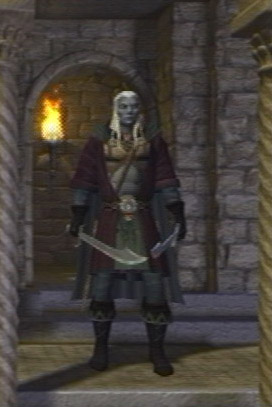Baldur's Gate- Dark Alliance - Drizzt Do'Urden