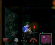 Luigi finds a Blue Stone