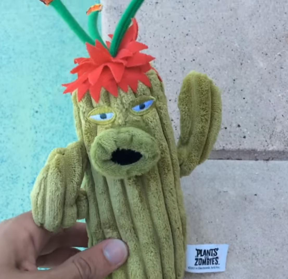 Paco Maria Cactus