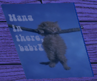File:Hang in there, baby!.png