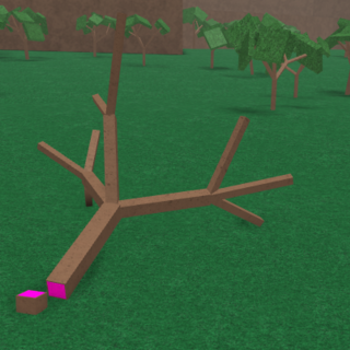 Image of a Pink Wood tree.