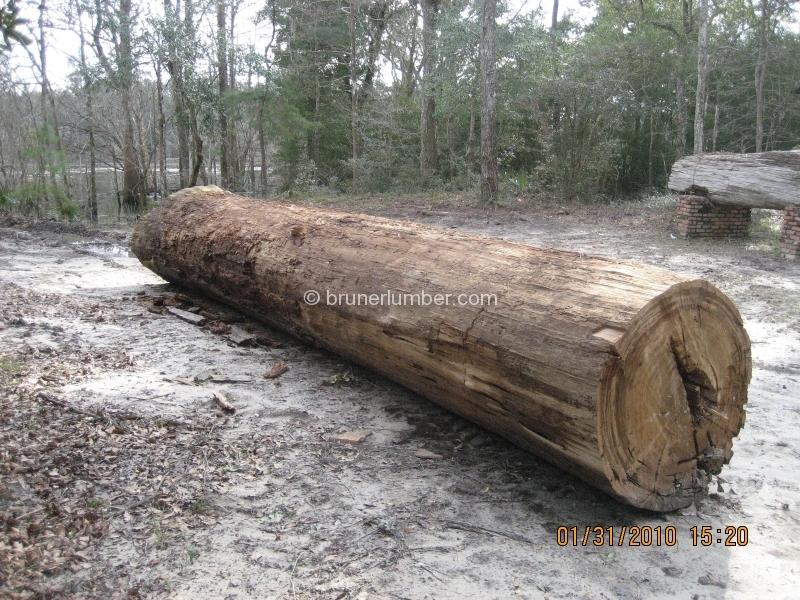 image sinker cypress log 010 jpg lumber tycoon 2 wikia fandom