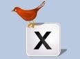 Thumb md birdWathcing