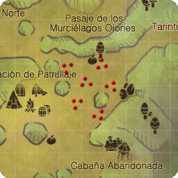 Oso Rojo Salvaje Nvl 31 loc