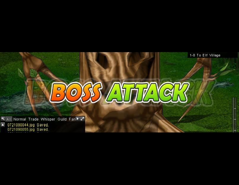 Boss Attack (1-8H)