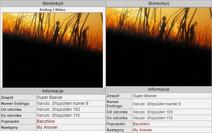 NarutoWiki PorównaniePI Opending2