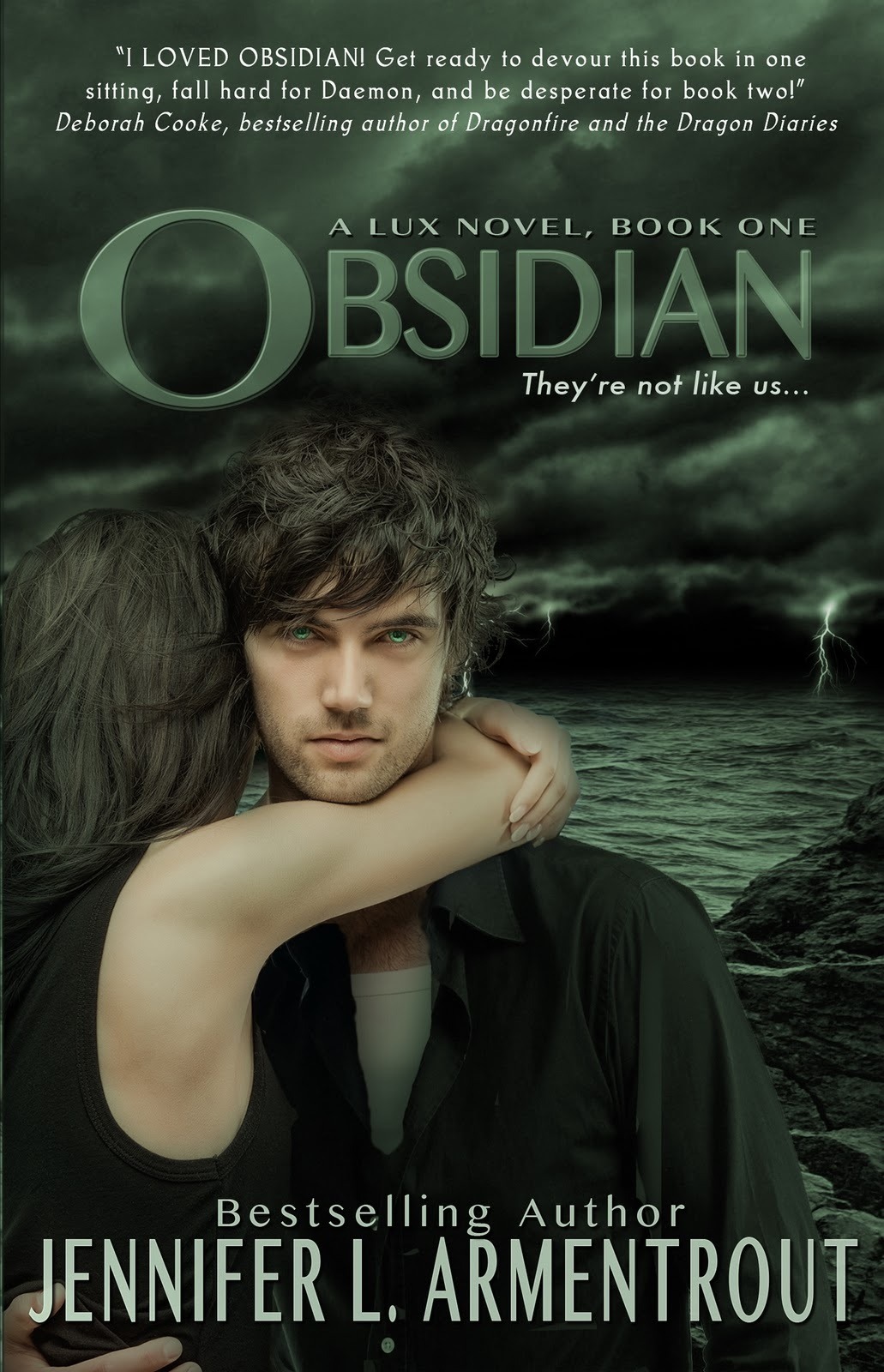 Image result for obsidian book series