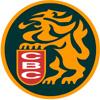 Leones del Caracas logo-1-