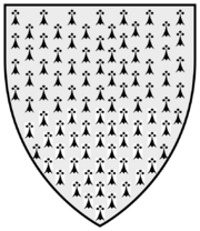 Shieldermine