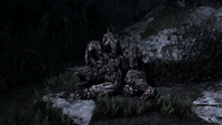 Стражи поедают медведицу