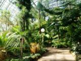 Ботанический сад (Санкт-Петербург)