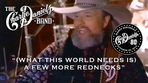 (What This World Needs Is) A Few More Rednecks