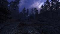Артём видит Хозяина леса