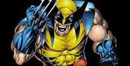 Marvel-Comics-Classic-Wolverine-Costume-Yellow-Blue