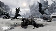 Ravens Exodus