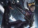 Catwoman & Harley Quinn & Poison Ivy vs Batman & Robin & Batgirl Heroic Battle/Shadow757