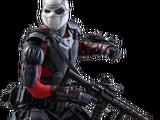 Deadshot/Agentk