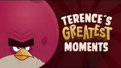 Best Of Angry Birds Toons - Terence's Greatest Moments-0