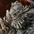 Doomsday Icon-Isk