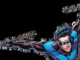 Nightwing/Agentk